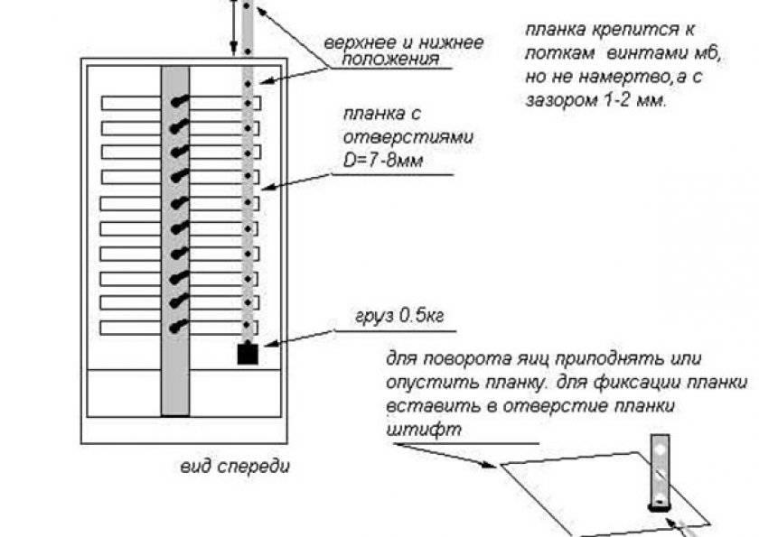 Устройство и сборка самодельного двухкамерного инкубатора