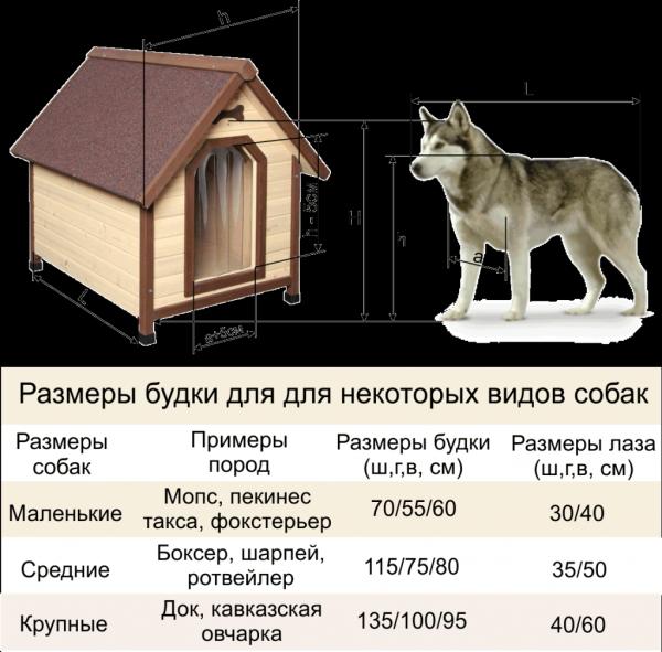 Будка для собаки своими руками: пошаговая инструкция как быстро и просто построить дом для собаки