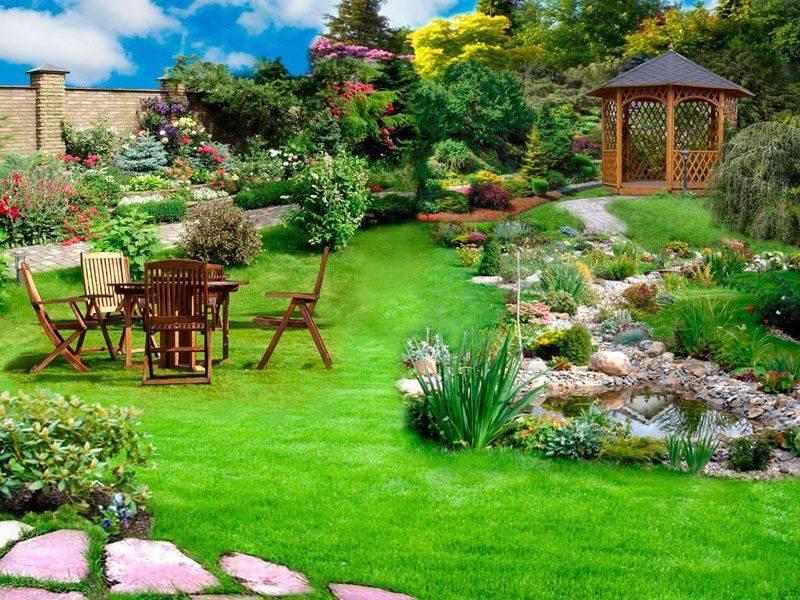 Романтический сад: плетистые розы в ландшафтном дизайне