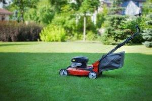 Уход за газоном весной – аэрация, вычесывание, укатка
