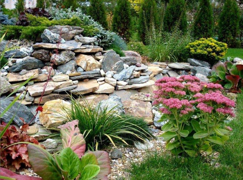 Секреты и рекомендации по устройству альпийской горки в своем саду