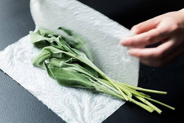 Правила хранения зеленого лука