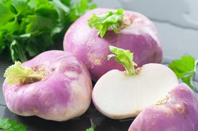 Корнеплоды, клубнеплоды, бахчевые и другие культуры для получения сочного корма