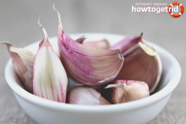 Чеснок, польза и вред для здоровья человека