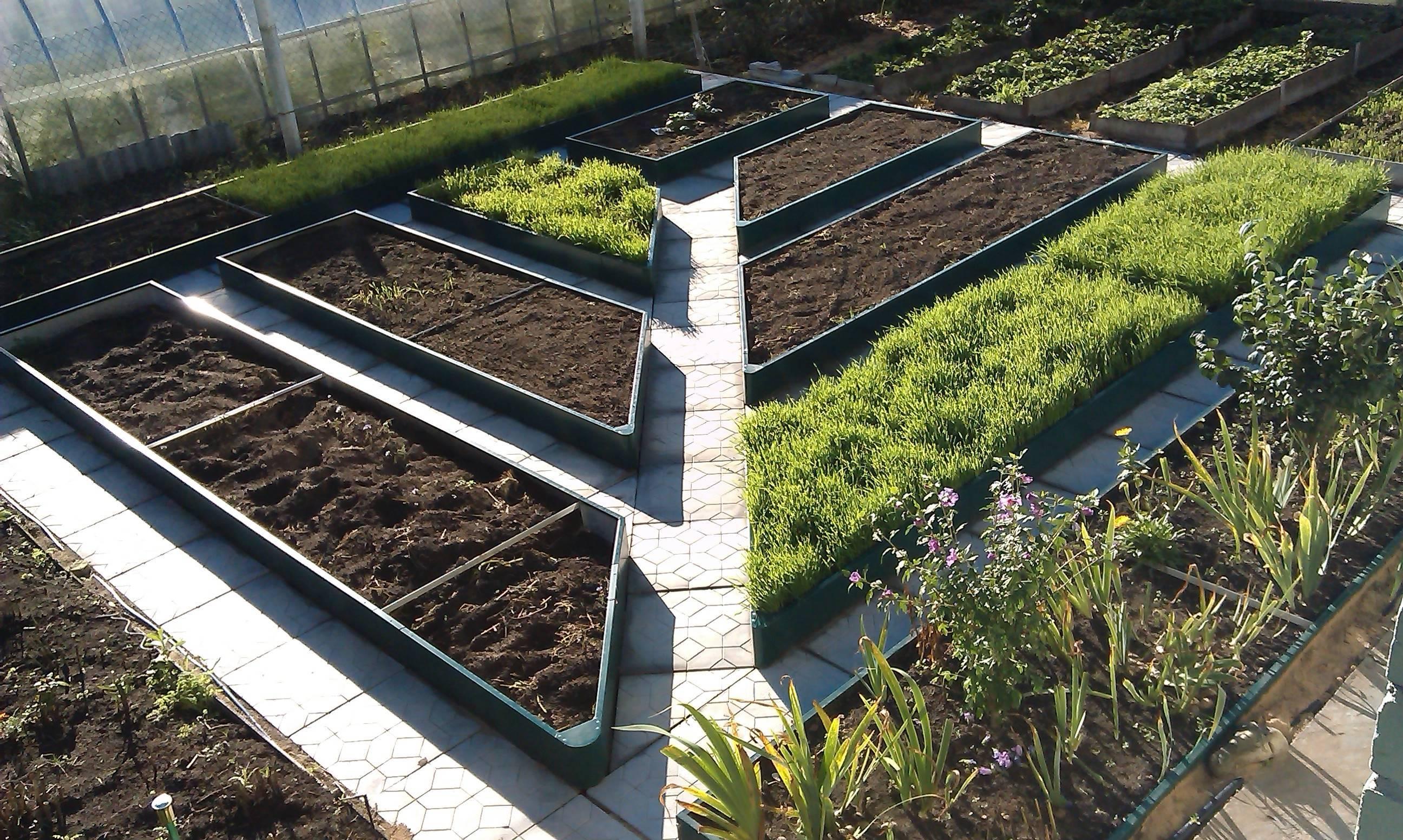 Отличный урожай с минимальными затратами — высокие грядки