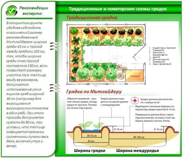 Метод митлайдера: семейное овощеводство на малых площадях