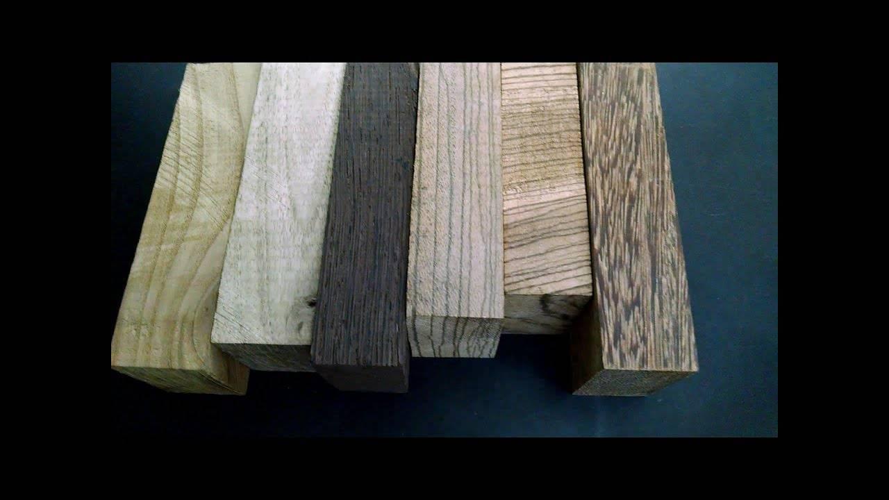 Железное дерево: разнообразие видов. удивительное знакомство с железным деревом