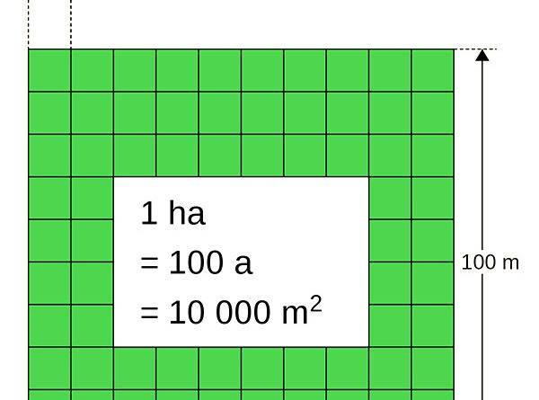 Сколько соток, акров, квадратных метров в гектаре: правила перевода, применение мер измерения