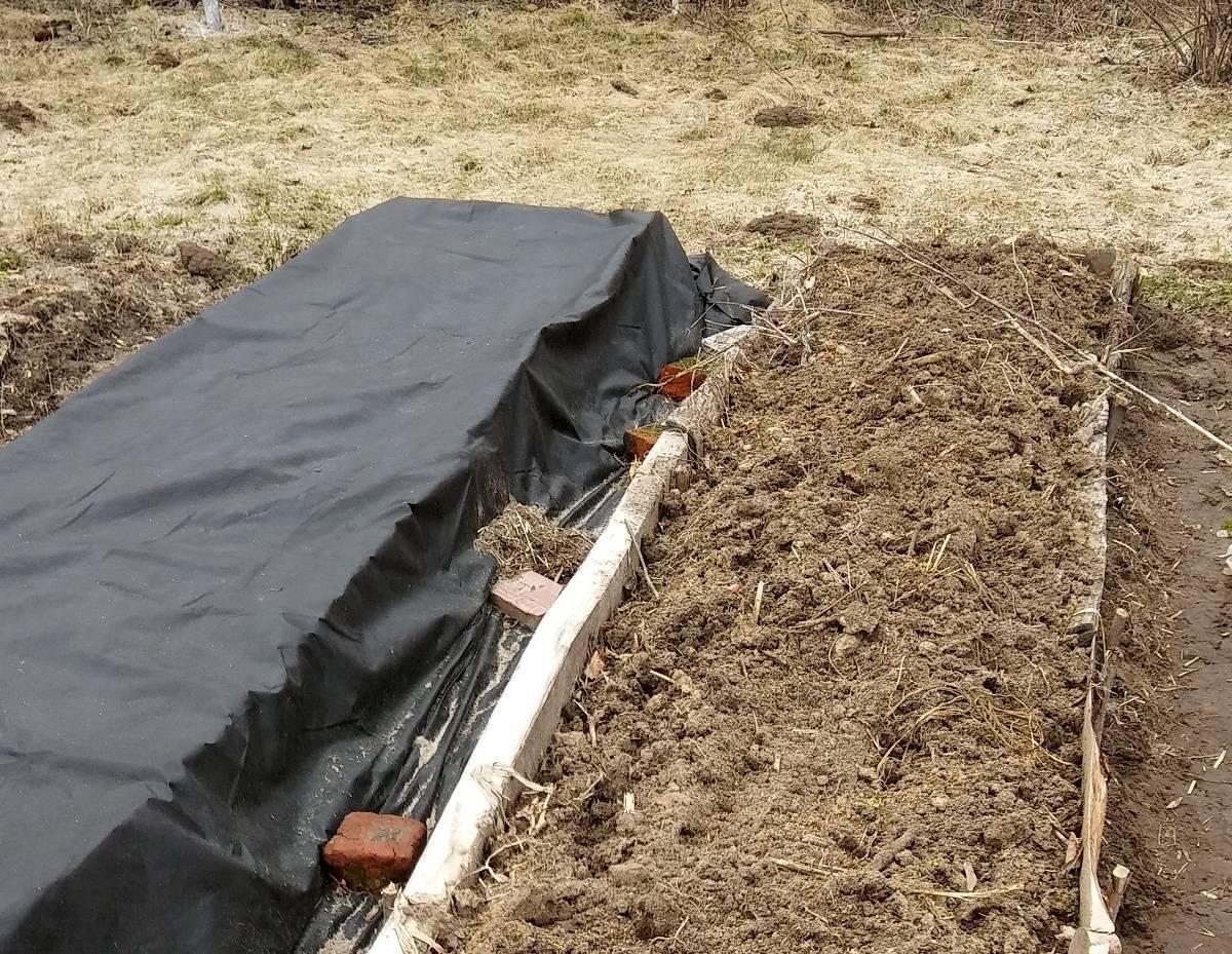 Теплая грядка своими руками весной для огурцов из спанбонда — то, что нужно для хорошего урожая огурцов даже в самое холодное лето.
