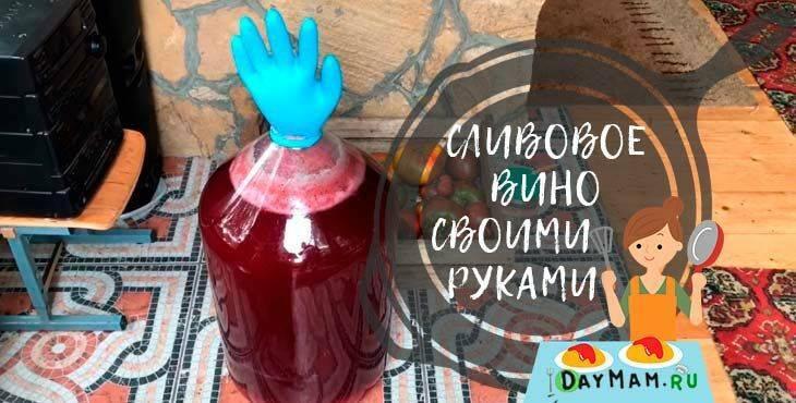 Простой и универсальный рецепт приготовления вина из слив в домашних условиях
