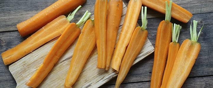 Ботва моркови: польза и вред для здоровья
