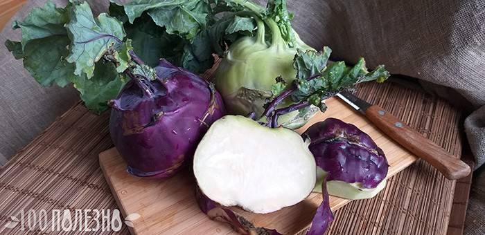 Капуста кольраби — полезные свойства и противопоказания