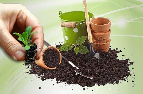 Приготовление, составление идеального почвогрунта субстрата для рассады
