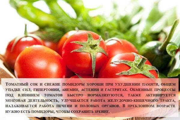 Лечебные свойства и польза помидоров для здоровья человека