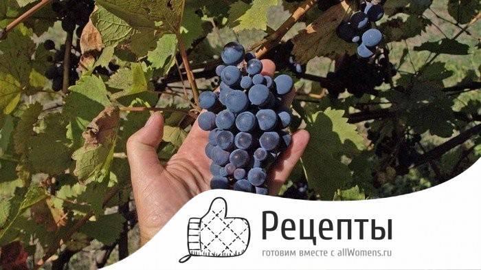 Компот из винограда на 3 литровую банку на зиму - 5 рецептов с фото пошагово