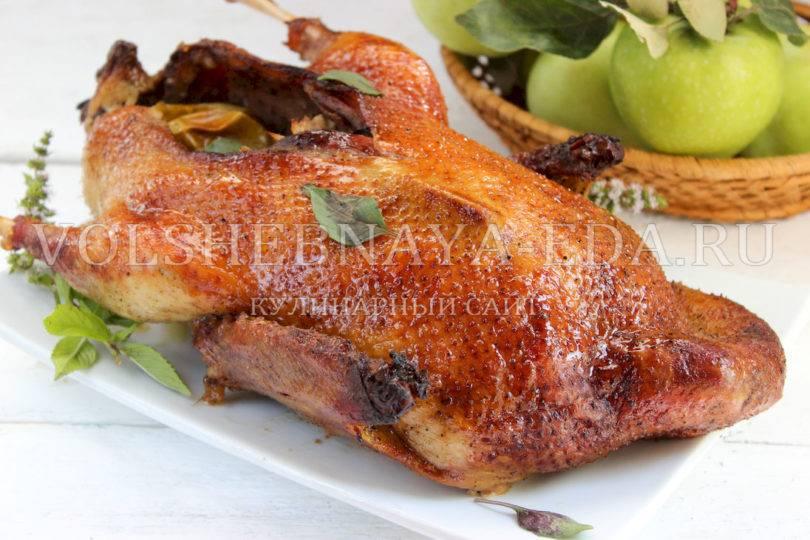 Утка с яблоками в духовке. простой рецепт приготовления утки