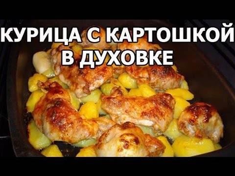 Курица с картошкой в духовке — 13 самых вкусных рецептов запекания