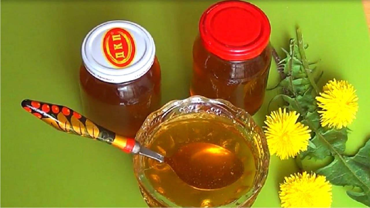 Мед из одуванчиков: полезные свойства, вред и как принимать
