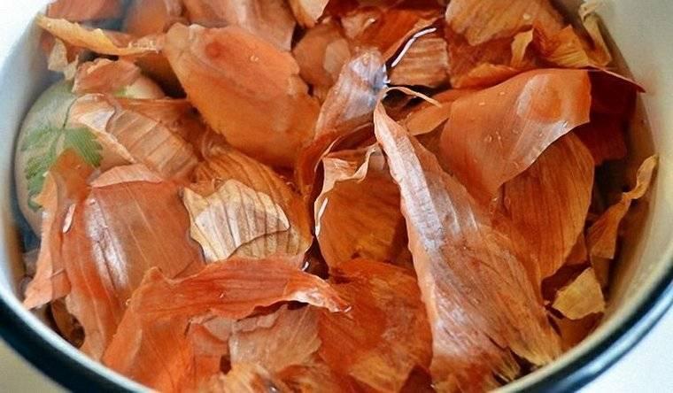 Чем вылечить 100 болезней: применение луковой шелухи в народной медицине