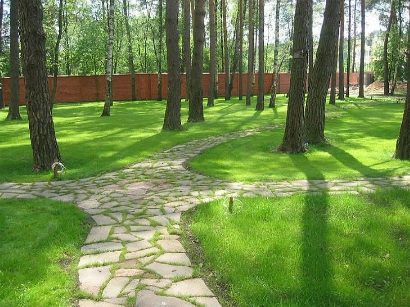 Красивые садовые дорожки из бетона: заливаем своими руками