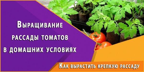 Применение цитовита для растений