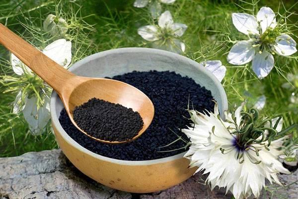 Применение масла черного тмина для улучшения здоровья