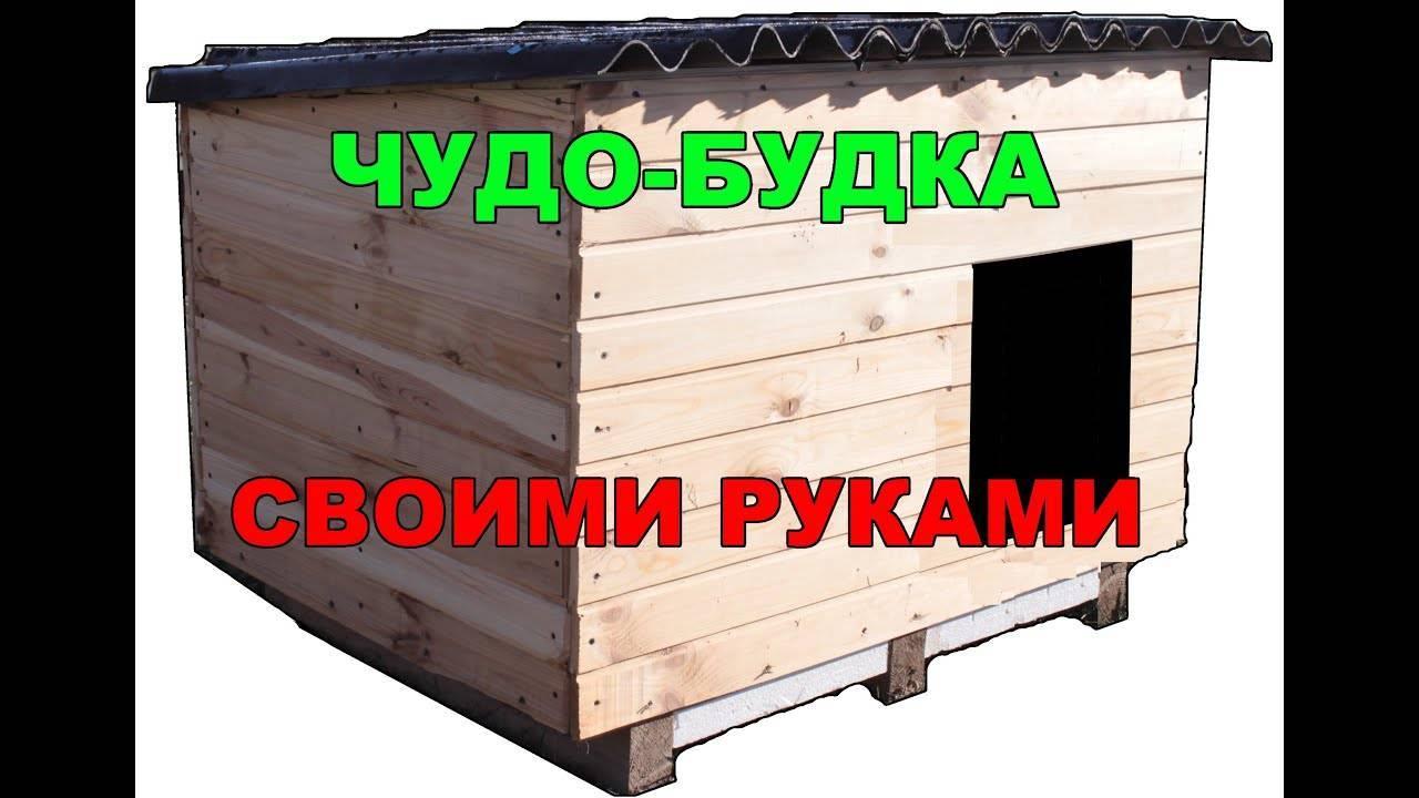 Чертежи и размеры будки для немецкой овчарки, инструкция по постройке конуры своими руками (фото)