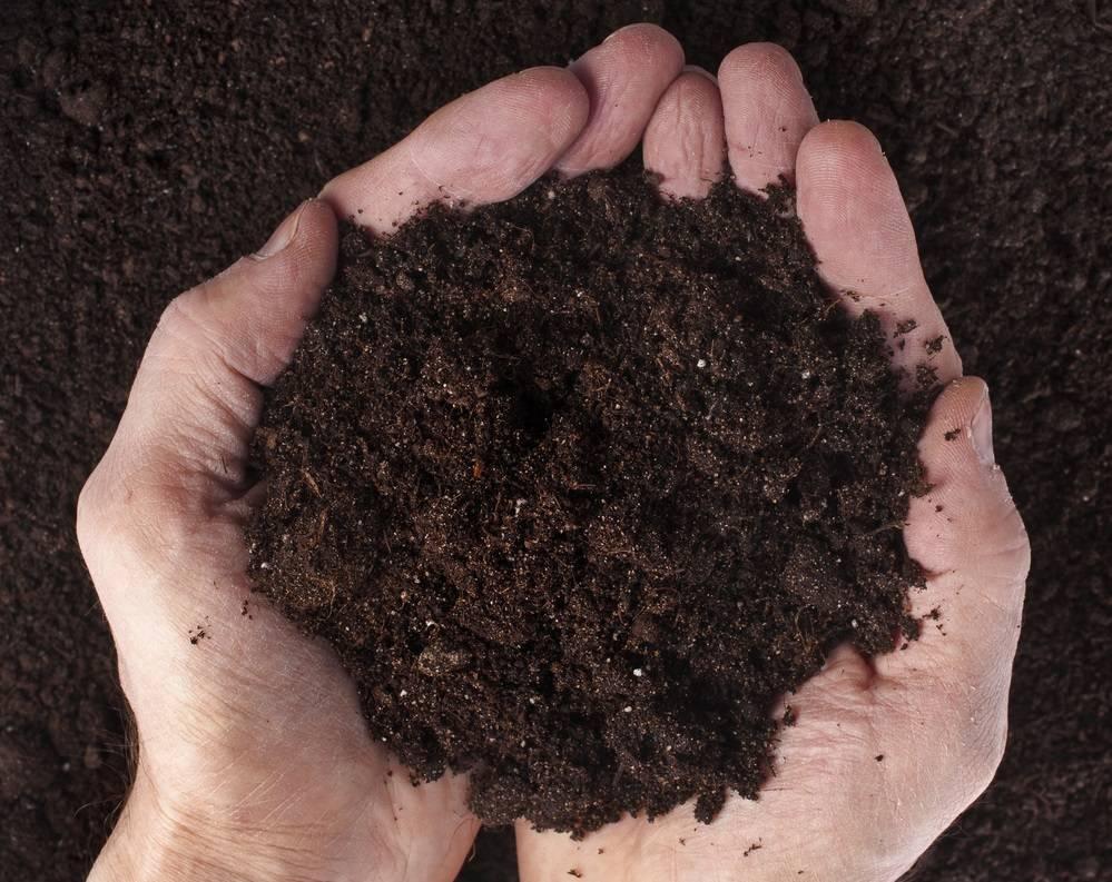 Полный обзор органоминеральных удобрений