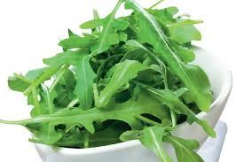 Салат руккола – вкусная польза для организма. лечебные свойства рукколы и противопоказания к употреблению