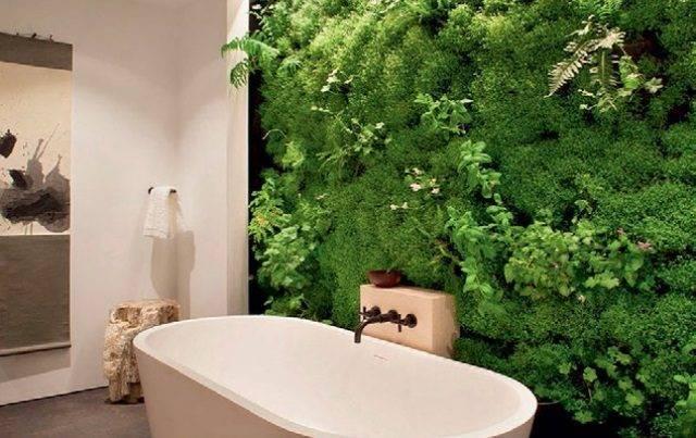 Живая стена из растений и мха в квартире и частном доме своими руками, видео