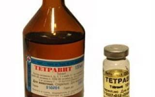 Подробная инструкция по применению препарата тетравит для собак