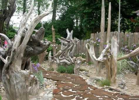 Рутарий в саду схемы посадок. удивительный рутарий – сад корней на вашем участке