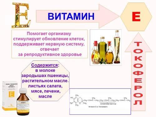 Масло жожоба в косметологии: полезные свойства и применение для кожи