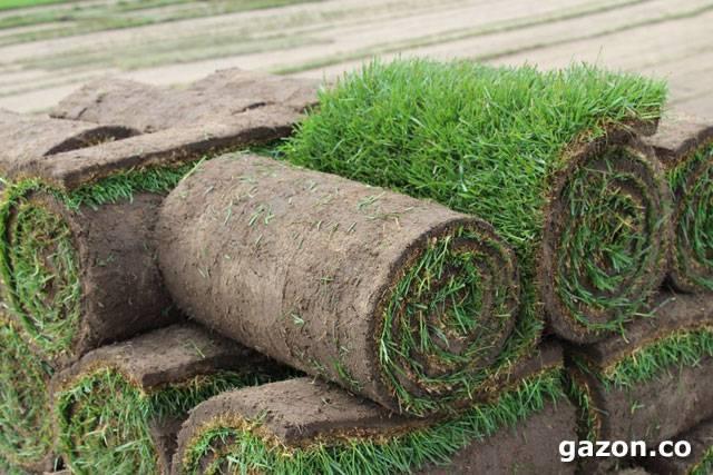 Удобрение для газонов — производитель китай, цена, видео