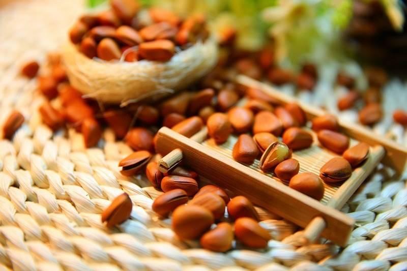 Чем полезны кедровые орешки для женщин
