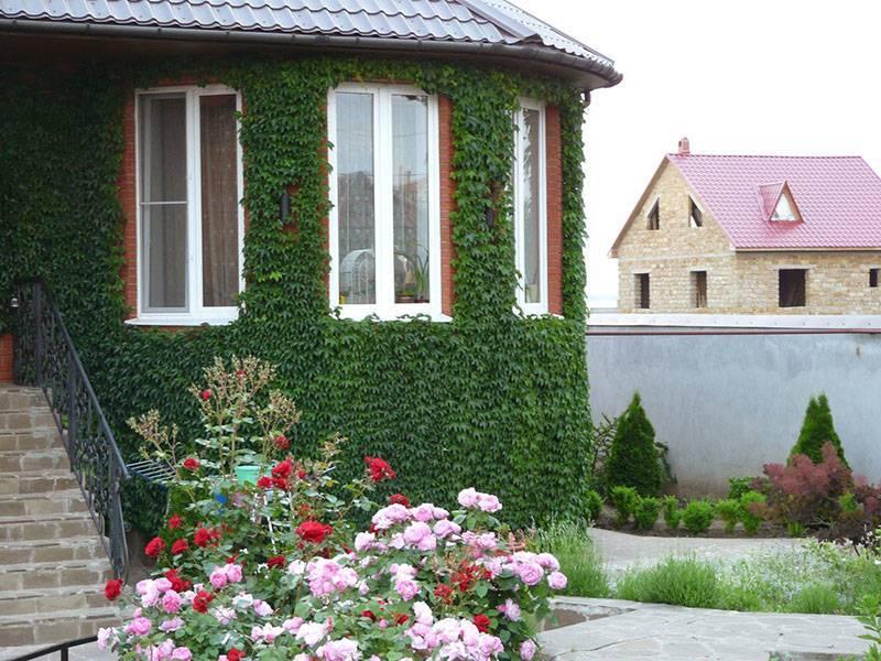 Дизайн приусадебного участка в частном доме: фото для вдохновения, советы и тренды