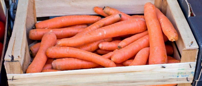 Подготовка моркови к зиме, как хранить: мытую или грязную?
