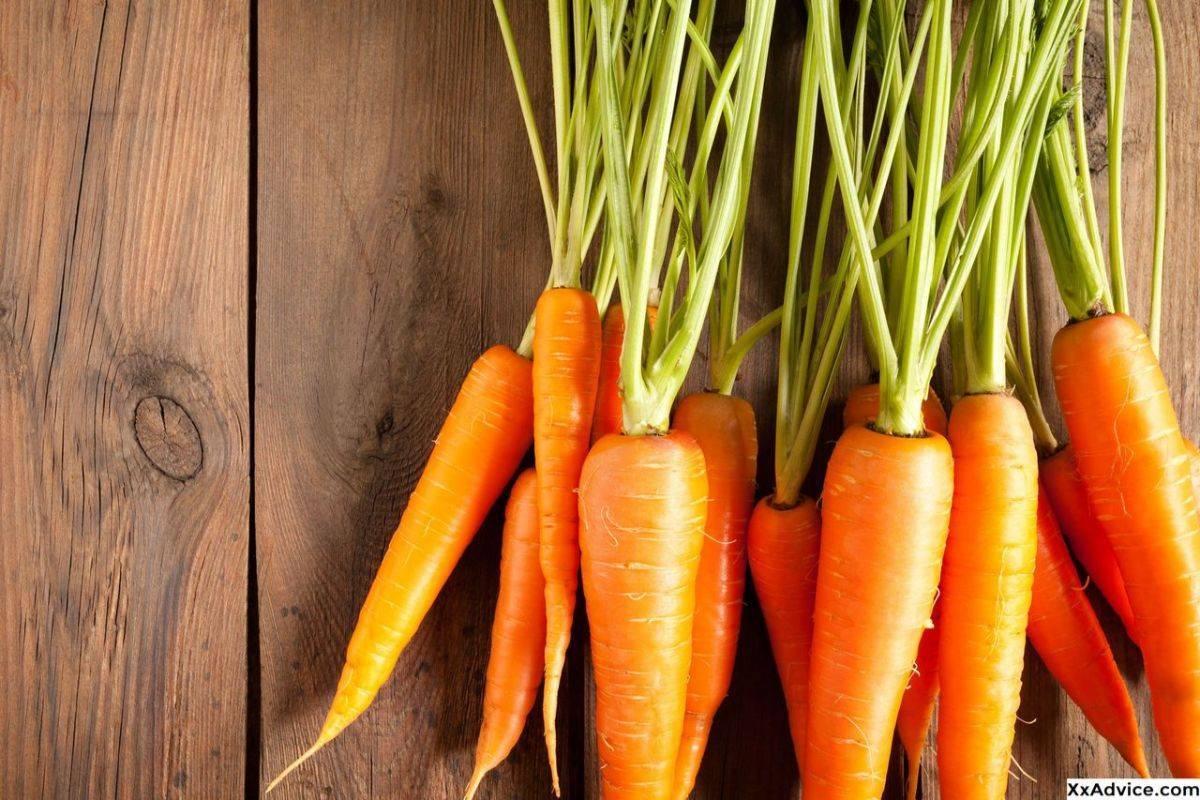 Какова польза сырой моркови и её вред для человеческого организма?