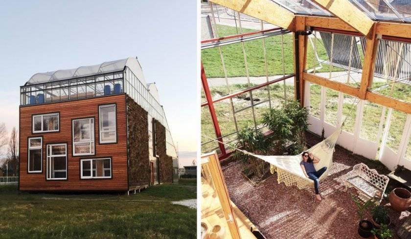 Теплица на крыше: правила возведения необычного ноу-хау на своем огороде