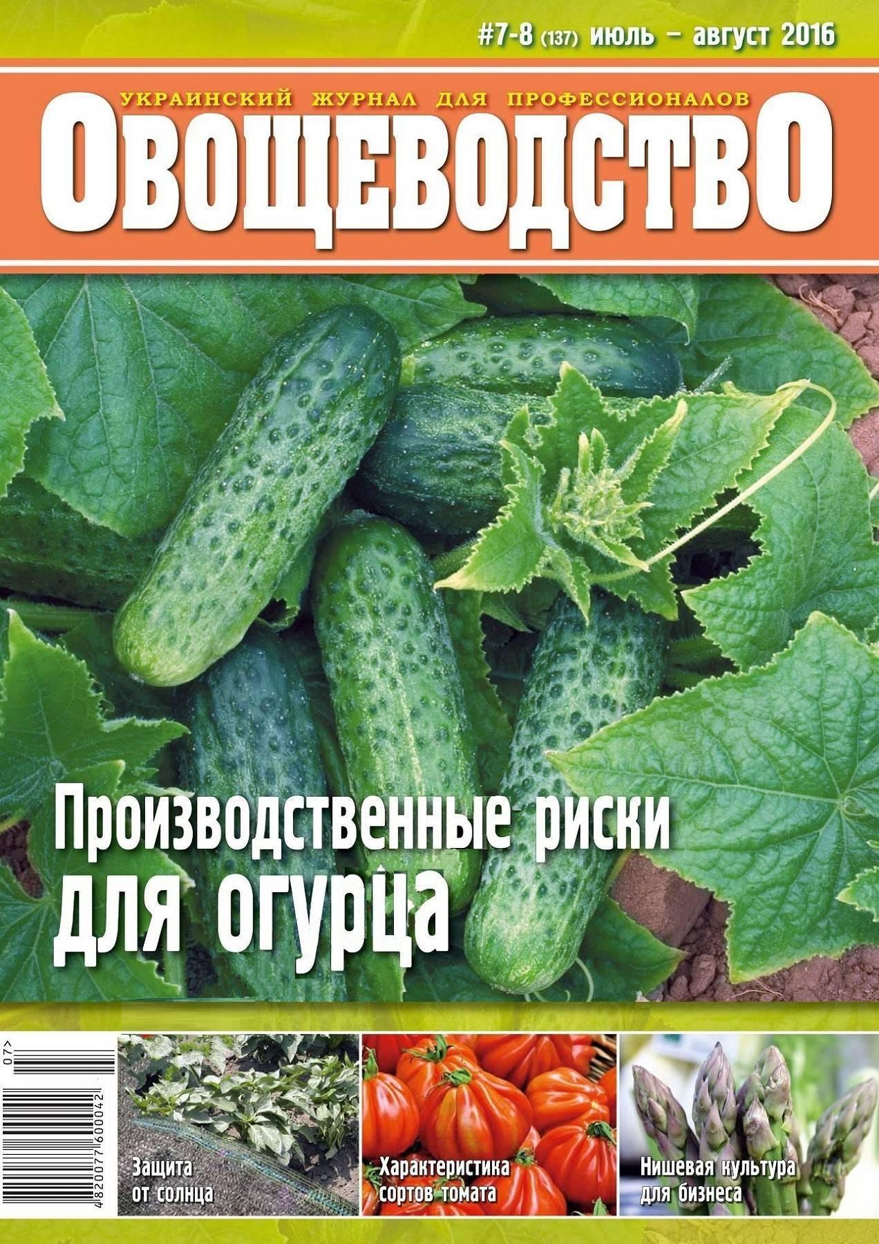 Чистые овощные грядки — плантатор для выращивания овощей из Китая