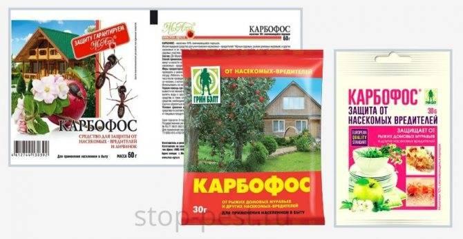 Защита от опасных насекомых: применение карбофоса в садоводстве
