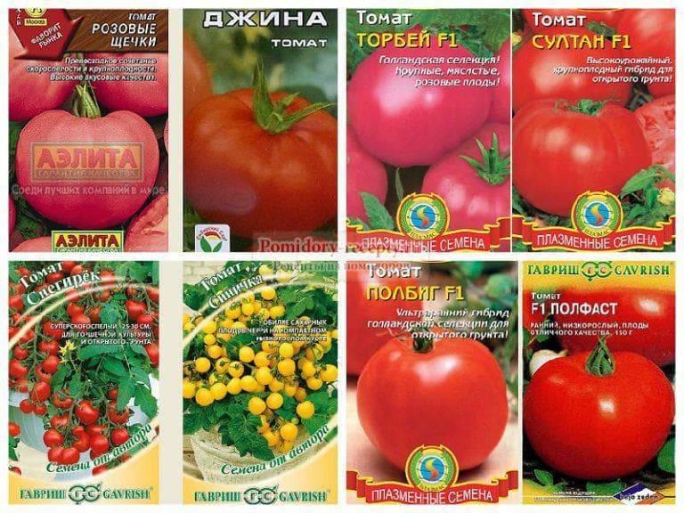 Ранние сорта томатов для открытого грунта – фото, описания и отзывы дачников