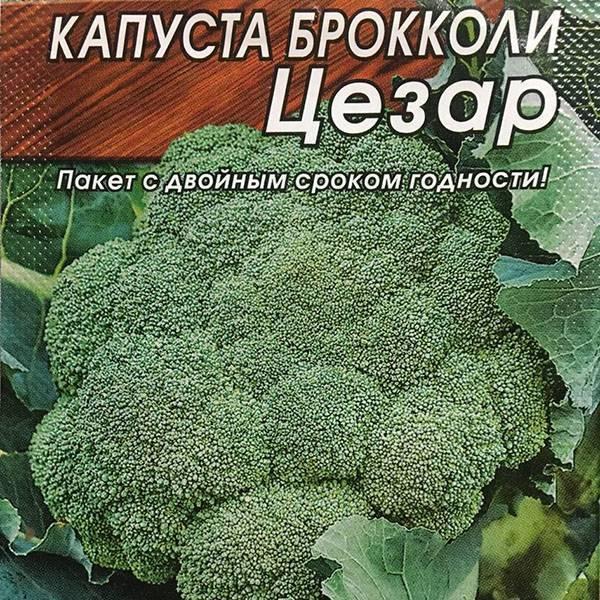 Капуста брокколи фиеста: описание гибрида и агротехника выращивания и ухода