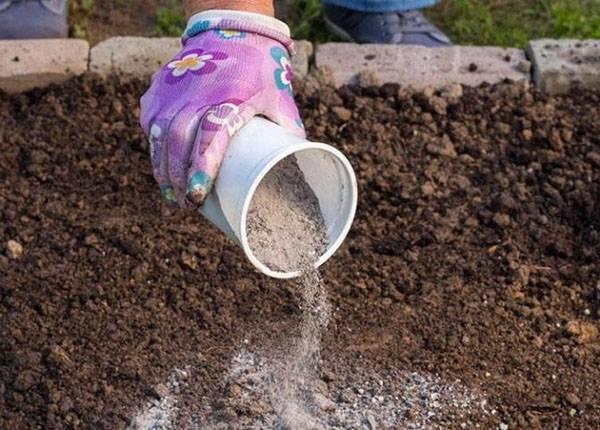 Можно ли использовать угольную золу как удобрение