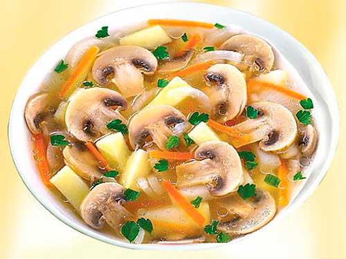 Грибной суп из шампиньонов, классические рецепты приготовления с плавленым сыром, картофелем, сливками другими продуктами