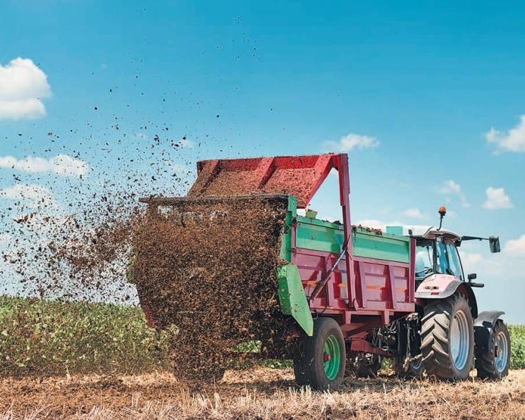 Навоз — лучшее органическое удобрение