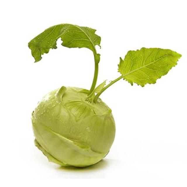 Польза капусты кольраби и возможный вред от нее. применение в кулинарии