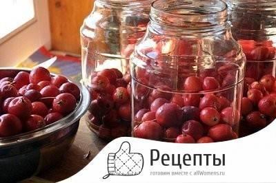 Рецепты компота из райских яблочек
