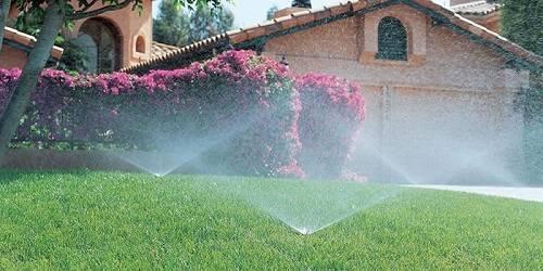Как правильно выбрать насос для полива огорода: практические советы, обзор лучших моделей