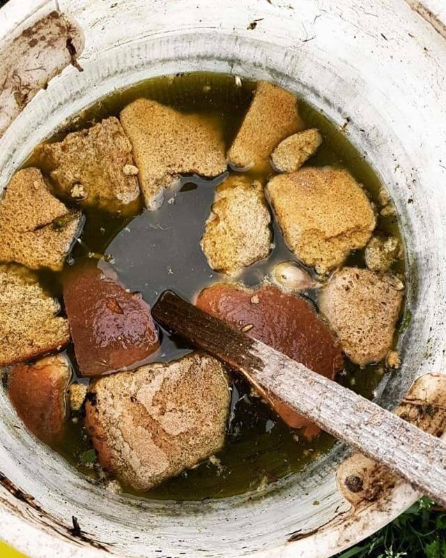 Хлебная подкормка для растений — рецепты приготовления